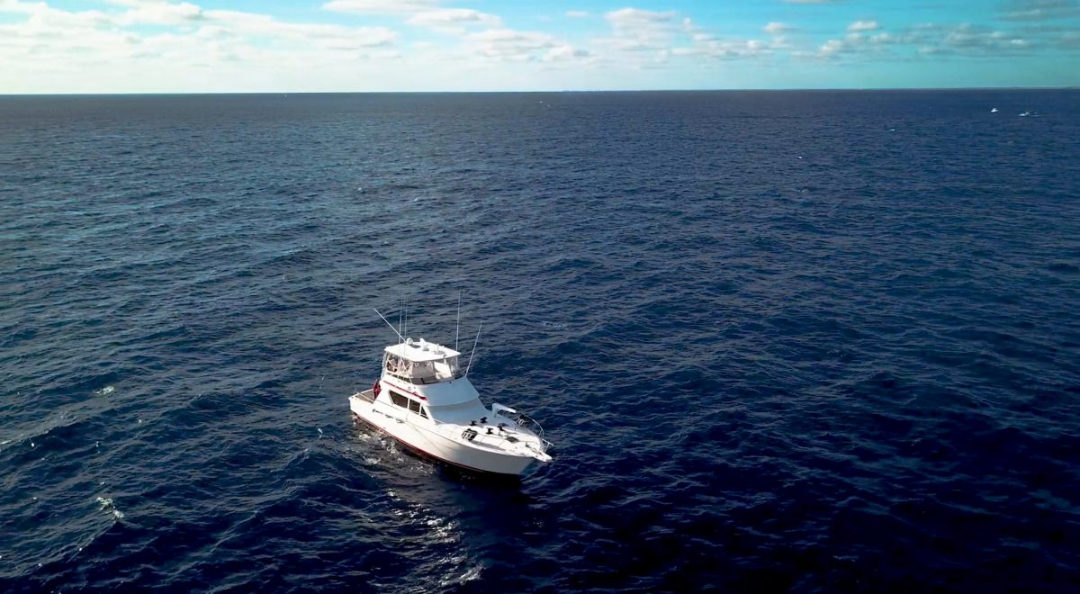 Gulf Stream Fishing 2019