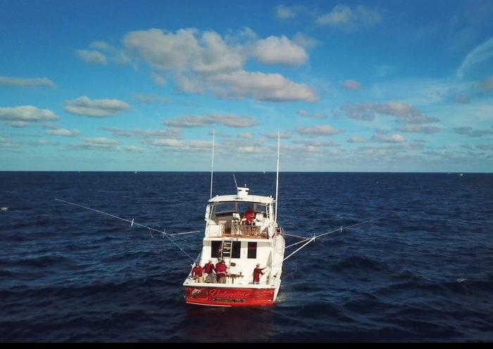Stuart Florida March Sailfish