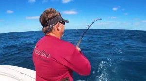 Why Fish the Gulf Stream?